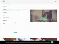 City-pattes.fr