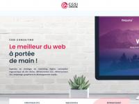 Cgsi-consulting.fr