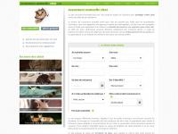 assurance-mutuelle-chat.com
