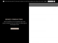 bonzi-consulting.fr