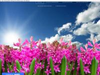 ecowaimes.weebly.com