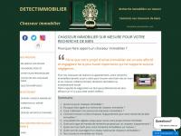 detectimmobilier.com
