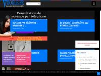voogle.fr
