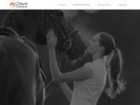 cheval-chevaux.com