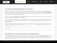 dsinfo.fr