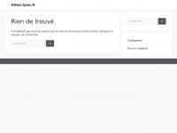 gites-lyon.fr