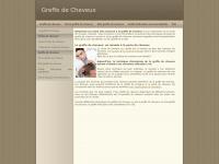 greffedecheveux.fr