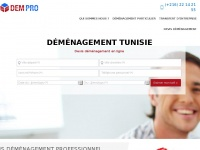Demenagement-professionnel.tn