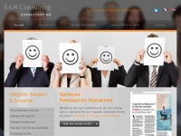 sanconsulting.ch