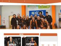 nuovapallacanestrotreviso.com