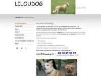 liloudog.fr