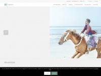 agencevu.com