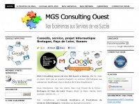 mgsconsulting.fr