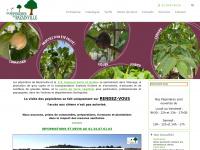 pepinieres-bazainville.fr