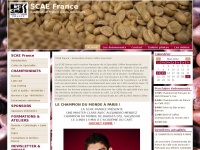 scaefrance.org