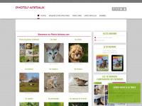 photos-animaux.com