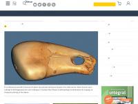 Pourlascience.fr