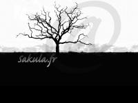 sakula.fr
