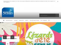 ville-senlis.fr