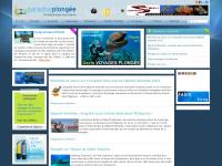 paradise-plongee.com