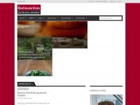 banlieusardises.com