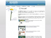 evolutiswebagency.com