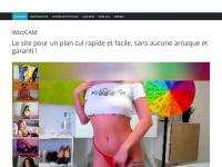 wizzcam.fr