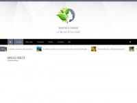 bien-etre-et-ecologie.com