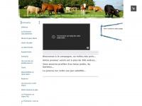Aisne Gite panda nature thierache maroilles randonnee cheval - Gite panda dans le bocage de Thiérache - gite Aisne - gite Picardie - gite Thiérache - gite ohis cheval randonnee