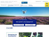 groupagrica.com