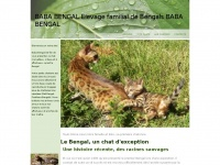 bengal-cat.biz
