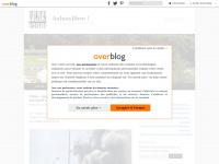 aulnaylibre.com