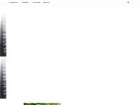 tout-le-net.com