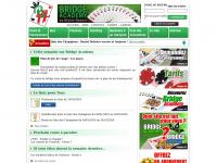 bridge-academy.com