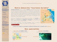 Dolphinexcursions.free.fr