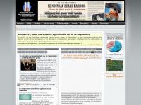 reopen911.info