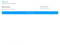 Test-qi.net