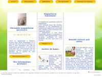 magnetiseur-magnetiseuse.com