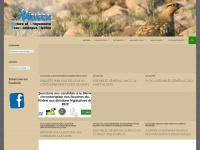 nacicca.org