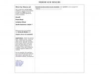 miroirsurmesure.net