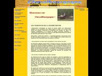 chevalbourgogne.com