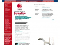 Ceeca.org