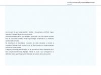kinesiologie-msb.fr