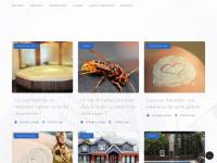 Annuaire-entreprises.org