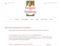 domainetrepaloup.com