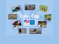 cun-cbg.com