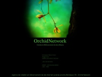 orchidnetwork.eu