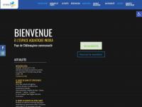 piscine-inoxia.com