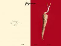 fulgurances.com