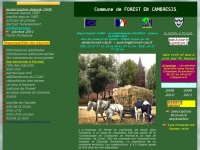 forest-cis.fr